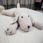 Pies z włóczki Dolphin Baby